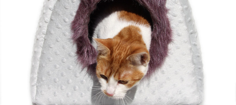 budka dla kota