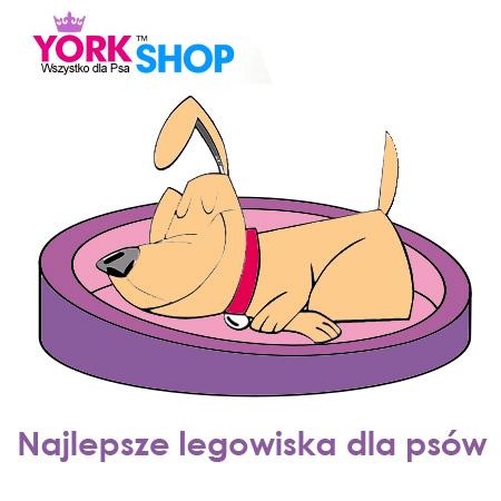 legowiska dla psa i kota York Shop