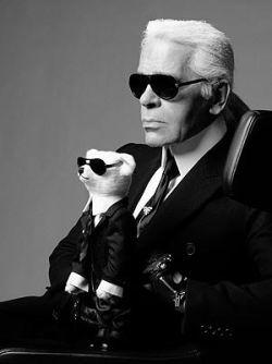 Karl Lagerfeld's ubranie dla psa