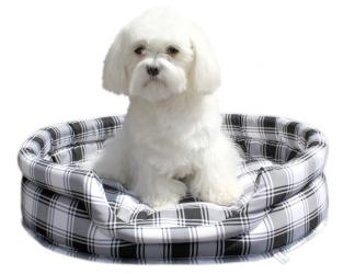 legowisko dla psa standard