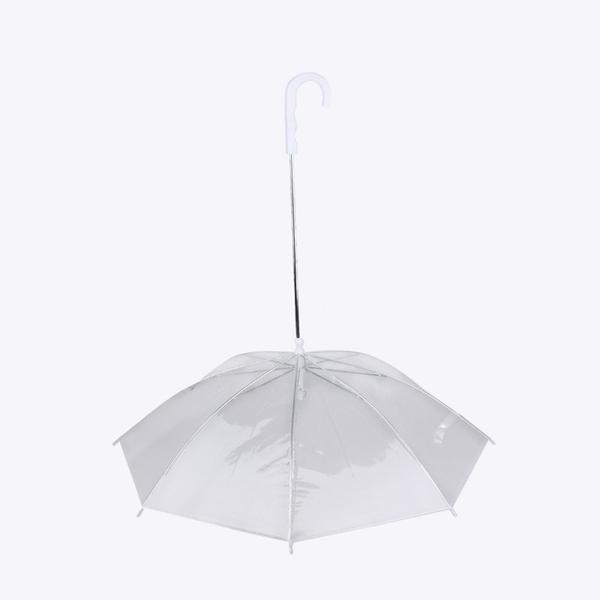 parasol w całej okazałości