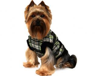 ubranie dla psa bezrekawnik