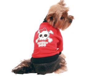 ubranie dla psa czaszka