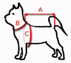 jak mierzyć psa