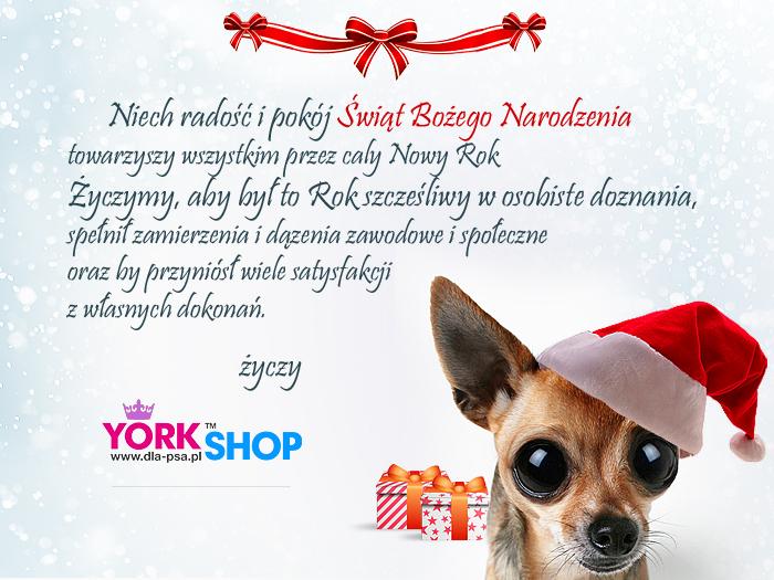 Kartka ubranka dla psów York Shop